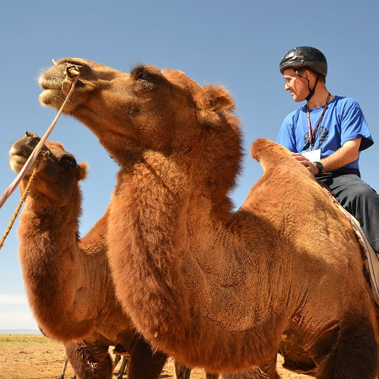 A man rides a camel. Another camel is beside it.