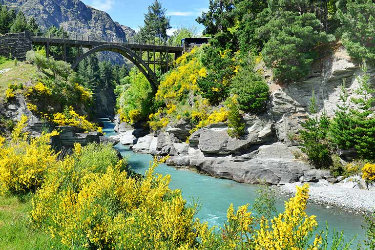 A river between two rocky hills with yellow flowers. A bridge is in the background
